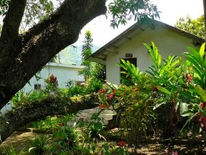 Cabaña Rio Salvaje