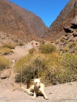200 ciudades que visitar - Los Andes